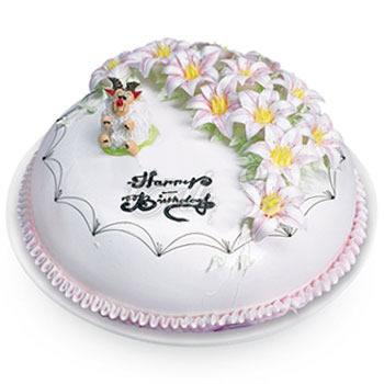 生日蛋糕/生肖蛋糕