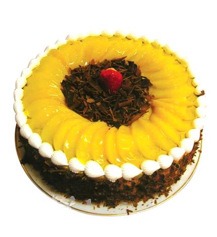 巧克力蛋糕/冬日暖阳