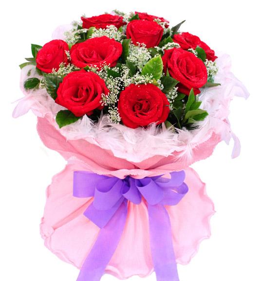 9朵红玫瑰/倾心爱恋