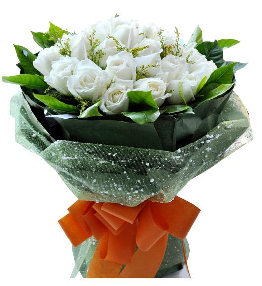 19朵白玫瑰/微笑天使
