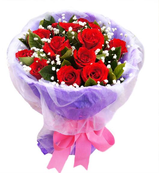 11朵红玫瑰/真心的爱