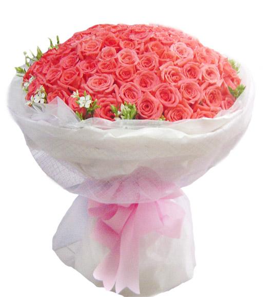 99朵粉玫瑰/无限的爱