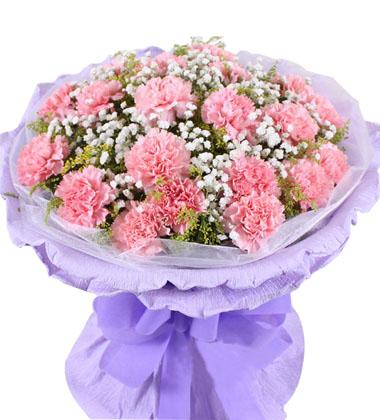 18朵粉色康乃馨/真心真意
