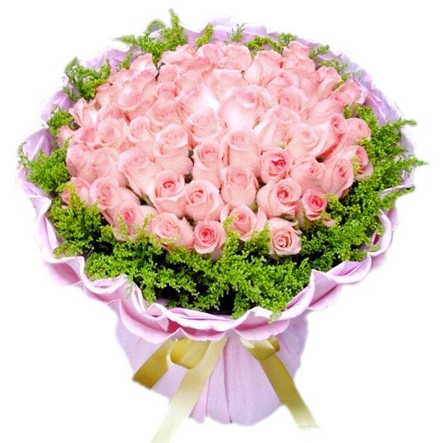 66朵粉玫瑰/情意无限