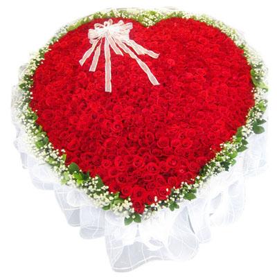 999朵红玫瑰/爱河永久