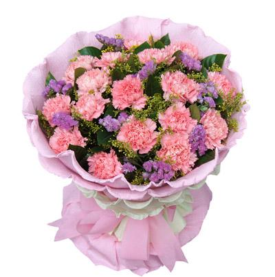22朵粉康乃馨/感恩的心