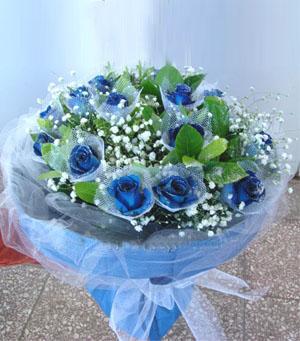 19朵蓝玫瑰/美丽的思念