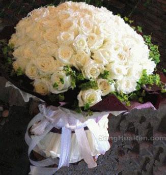 99朵白玫瑰/爱的主打歌