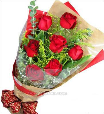 9朵玫瑰/追求