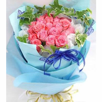 22朵粉玫瑰/梦想成真