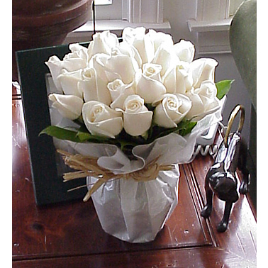 24朵白玫瑰/冬之�偾�
