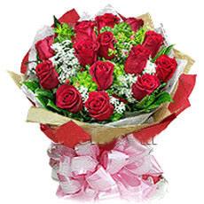 18朵红玫瑰/想你念你