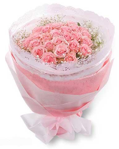 77朵粉玫瑰/偶然