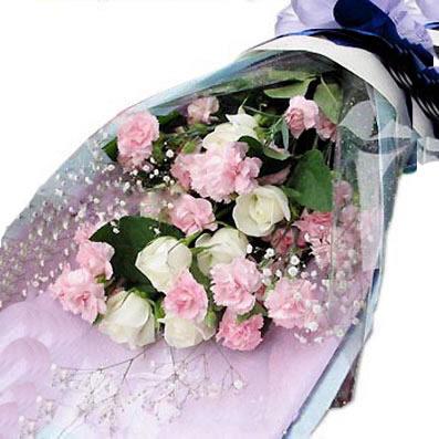 19朵康乃馨/妈妈,爱你