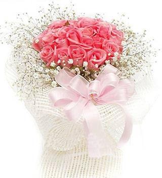 21朵粉玫瑰/浪漫一生