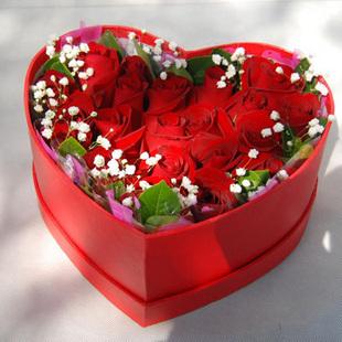 18朵红玫瑰/幸福此生