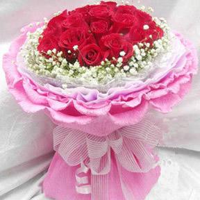 19朵红玫瑰/温暖