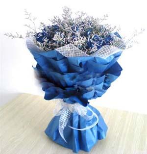 18朵蓝玫瑰/永恒的爱