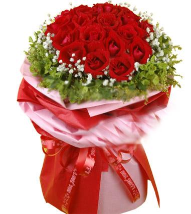 20朵红玫瑰/爱的焰火