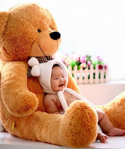 �Y品/泰迪熊