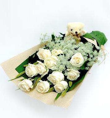 11朵白玫瑰/我的心上人