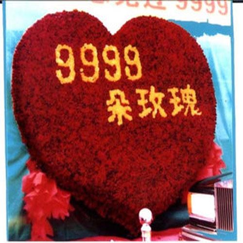 9999朵玫瑰/爱你一辈子