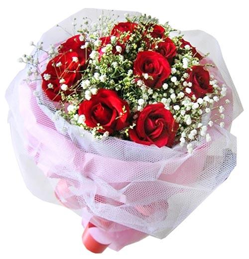 11朵�t玫瑰/一心一意